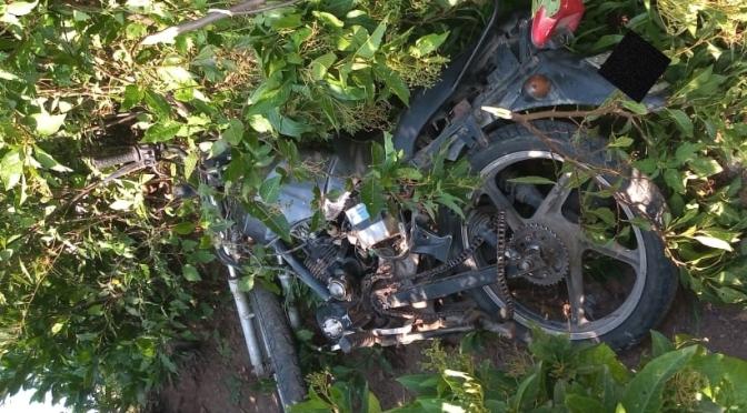 Recupero de una moto robada de entre los pastizales